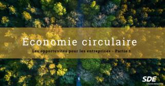 Economie circulaire : opportunité pour les entrepreneurs
